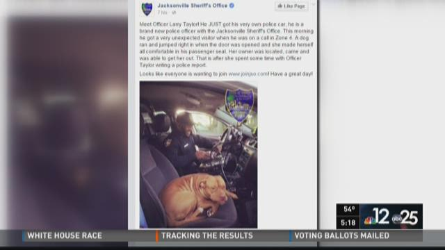 JSO officer gets unexpected company on duty