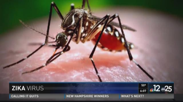 University of Florida faculty studying Zika virus
