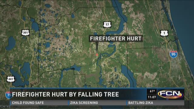 Firefighter hurt by falling tree