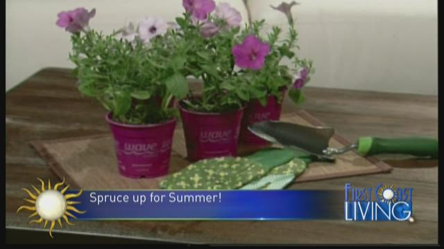 Spruce Up for Summer with Kelly Edwards