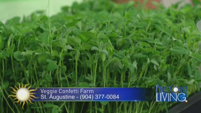 Veggie Confetti Farm